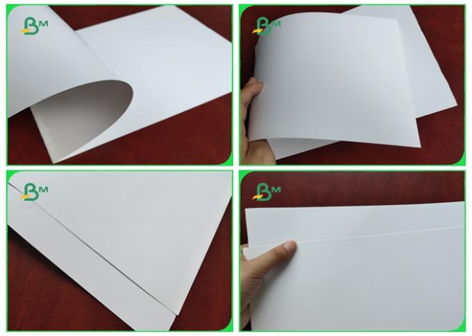 200g / 300g / 150g Matt Art Paper With FSC & SGS Certifiate For Printing 60cm