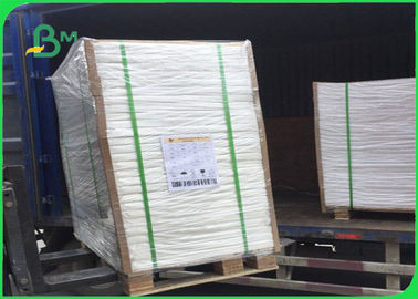 300g C1S Coated Board Coated 15g Poly 700 * 1000mm Untuk Chips Packing Box
