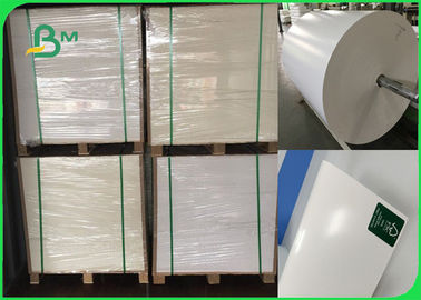 Lebar 708mm 300gsm + 15g PE CIS Ivory Board Poly Coated Paper Untuk Lunch Box