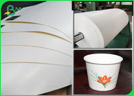 100% Biodegradable PLA Coated Food Grade Paper Roll Paper Cup Base 210g + 26g